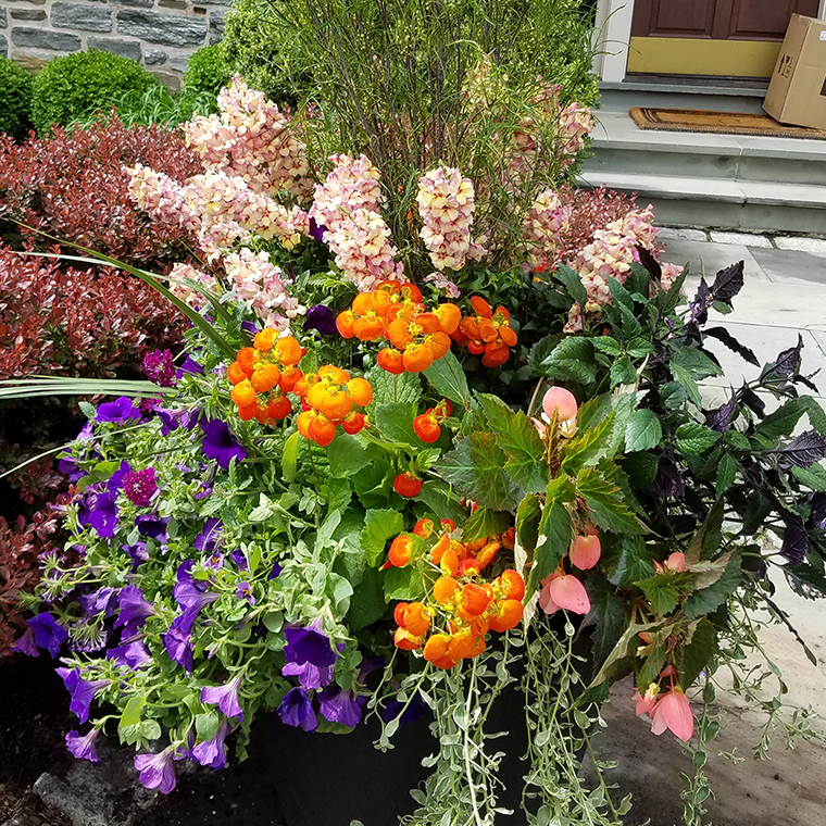Spring Planters1