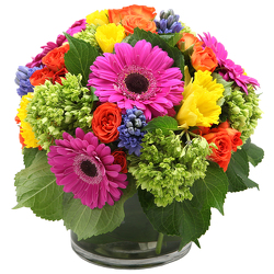 Bright Spring Arrangement from Valley Forge Flowers in Wayne, PA