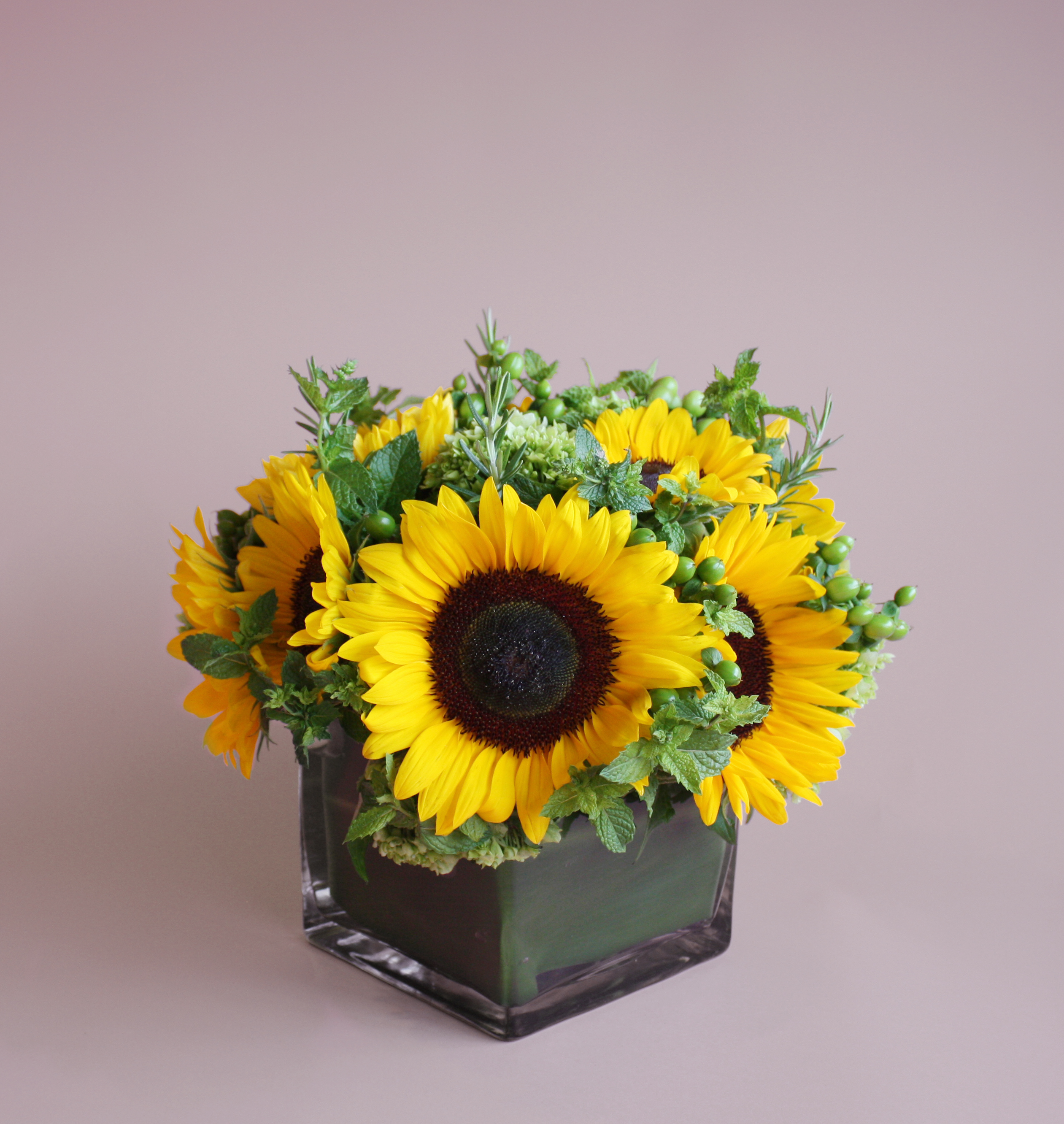 Rays of Sunshine from Valley Forge Flowers in Wayne, PA