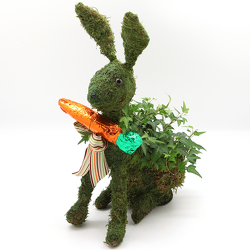 Bunny Ivy Topiary with Chocolate Carrot from Valley Forge Flowers in Wayne, PA