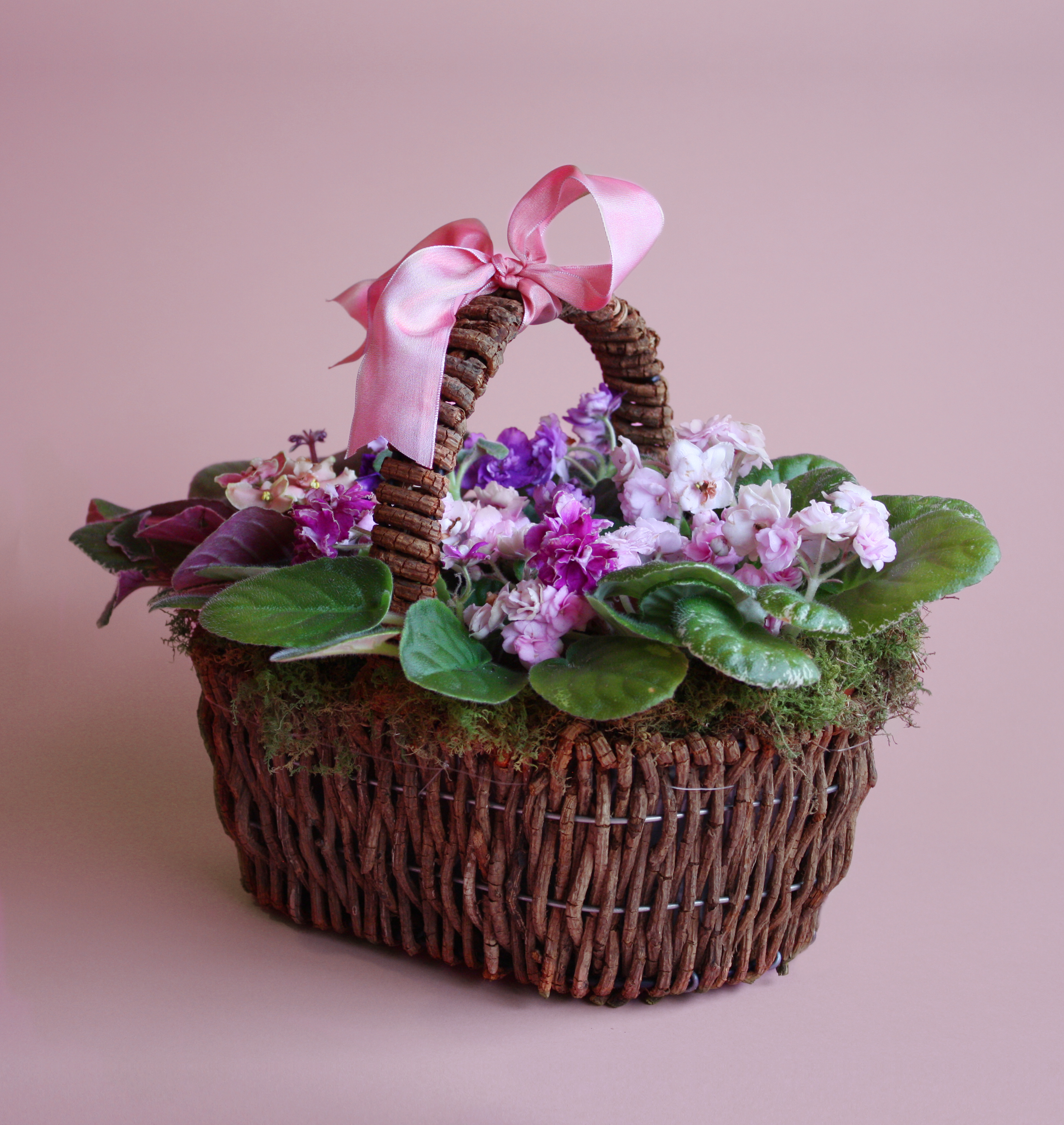 Sweet Violet from Valley Forge Flowers in Wayne, PA