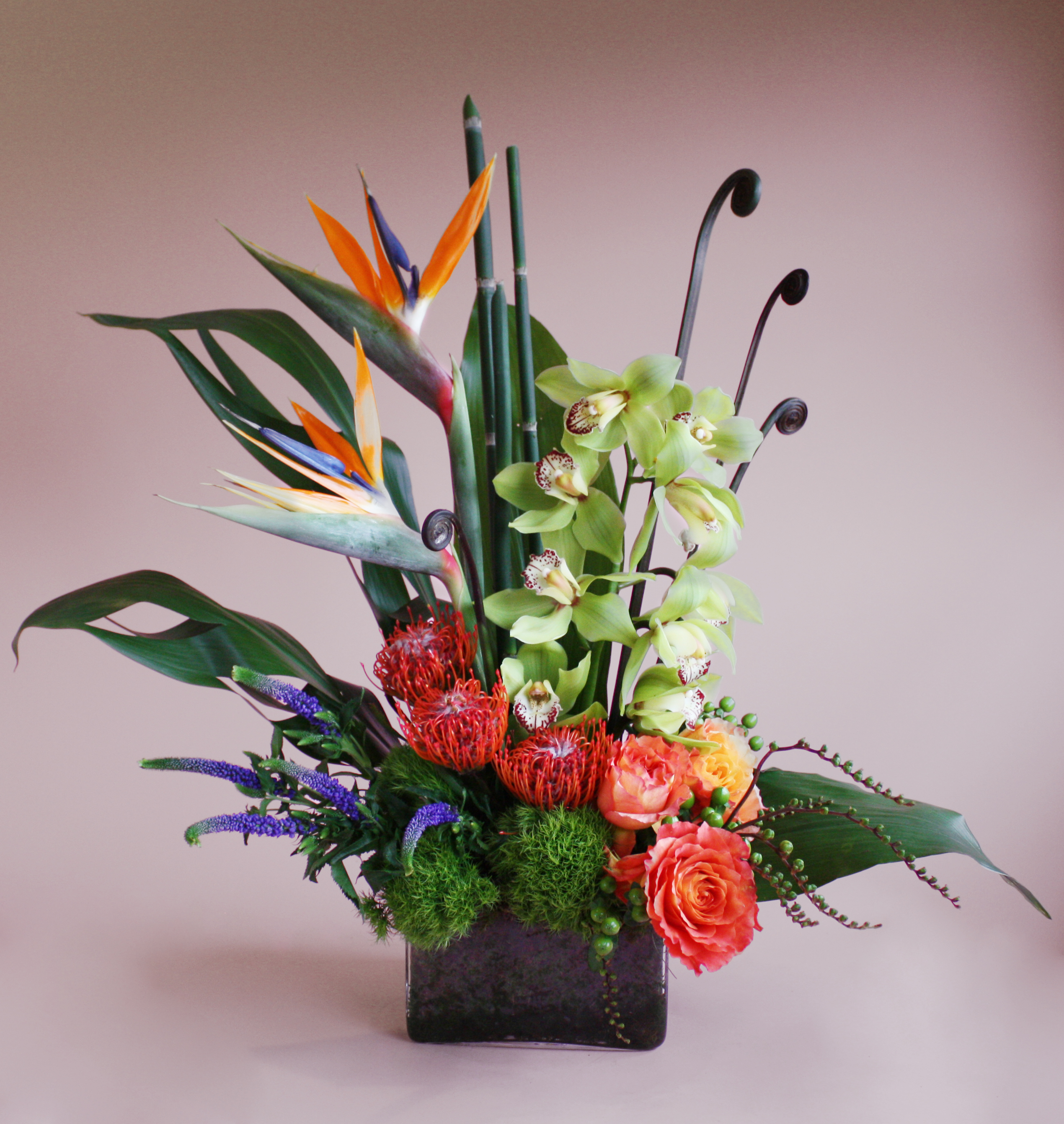 Tropical Inspirations from Valley Forge Flowers in Wayne, PA
