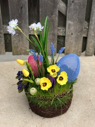 Egg Hunt from Valley Forge Flowers in Wayne, PA