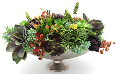 Large Colorful Succulent Arrangement from Valley Forge Flowers in Wayne, PA
